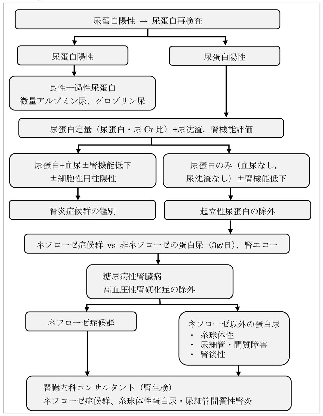 症候群 診断 基準 ネフローゼ